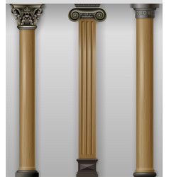set vintage classic wood carved columns on wall vector image