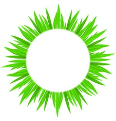 spring grass circle t 01 vector image