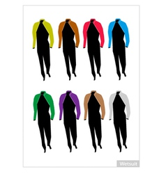 Set of Wetsuit or Diving Suit on White Background vector image