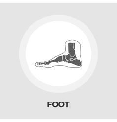 Foot anatomy flat icon vector image vector image