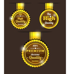 Golden vintage sticker vector image
