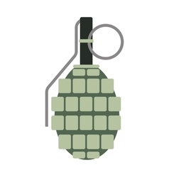 Hand grenade bomb explosion weapons vector image