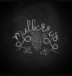 mulberry sketch vector image vector image