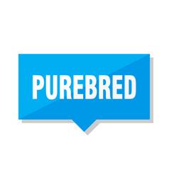 purebred price tag vector image
