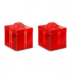 red box with bow vector image