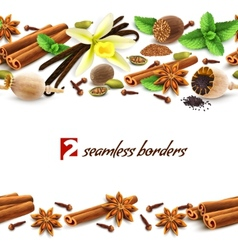 Spices seamless borders vector image