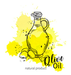 bottle of olive oil with olives vector image