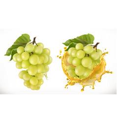 white sweet grapes and juice splash fresh fruit vector image