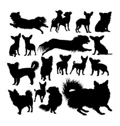 chihuahua dog animal silhouettes vector image