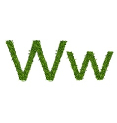 Isolated grass alphabet on white background vector image