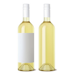 wine bottle isolated realistic 3d vector image vector image