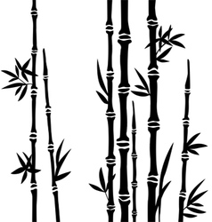 Bamboo branches isolated on the white background vector