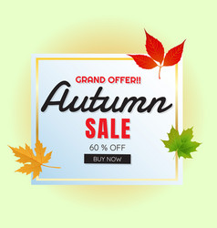 Grand offer autumn sale 60 buy now maple leaf fra vector