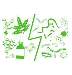Herbal medicine vs bacteria and parasites vector