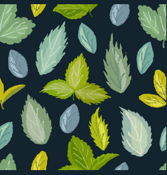 Seamless pattern of berry leaves vector