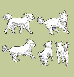 Sketches of a playful terrier vector