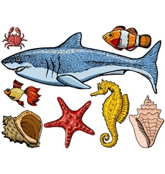 Underwater world vector image vector image