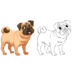 Animal outline for little pug dog vector