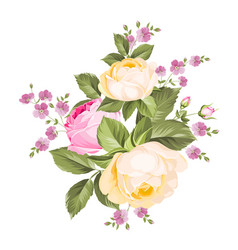 bouquet roses iolated on white background vector image