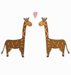Hand drawn a pair of giraffes vector