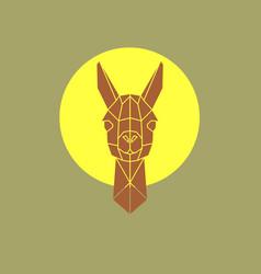 head lama vector image