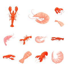 isolated object of shrimp and crab symbol set of vector image
