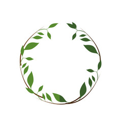 leaf around symbol vector image