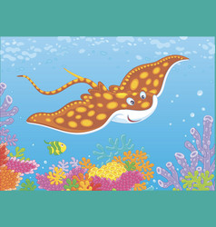 spotted ray over a reef vector image