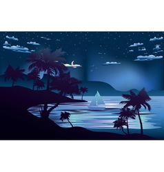 Tropical Island at Night2 vector image