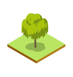willow tree isometric 3d icon vector image