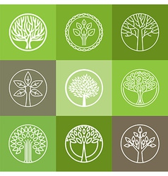 tree logo set vector image