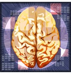 Brain work vector image vector image