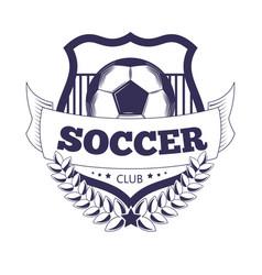 soccer club or football league ball star vector image