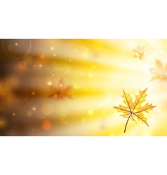 Blurred autumnal background vector image