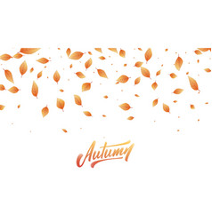Fall leaves background autumn leaves frame vector