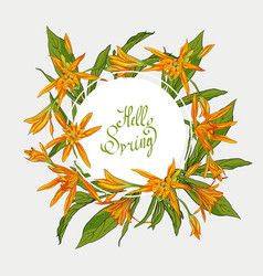 flowers lilies round frame hello spring vector image