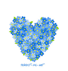Heart made of forget-me-not flowers vector