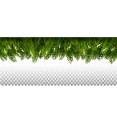 Holiday christmas board with green tree branches vector