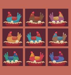 laying hens chicken farm breeding hens birds vector image