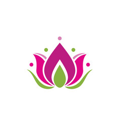 lotus flower icon design template isolated vector image