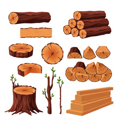 set of firewood materials for lumber industry vector image