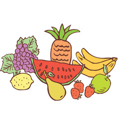 Still life ripe fruit all objects isolated vector