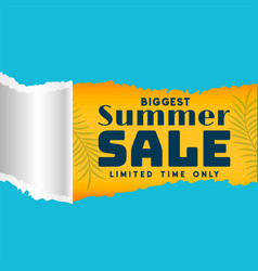 Summer sale template in torn paper style vector