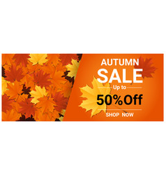 autumn sale banner with colorful leaves vector image vector image