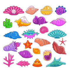 sea shells exotic marine cartoon clam-shell vector image