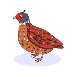A bird california quail vector