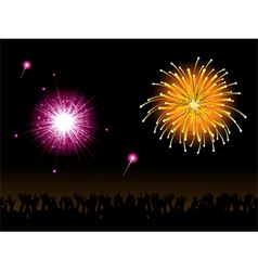 fireworks and crowd vector image vector image