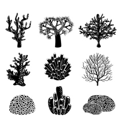 set of black coral silhouettes vector image