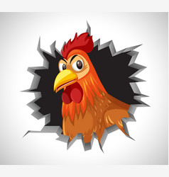 Angry chicken coming out cracked wall vector
