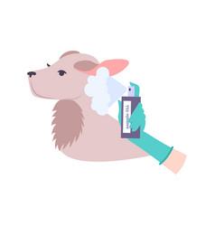 Animal experiments icon vector